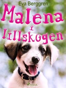 Malena i Lillskogen (e-bok) av Eva Berggren