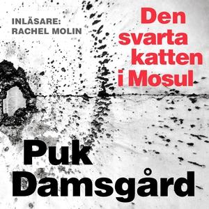 Den svarta katten i Mosul (ljudbok) av Puk Dams