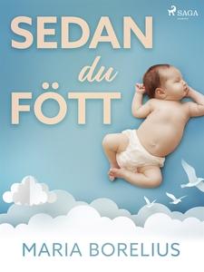 Sedan du fött (e-bok) av Maria Borelius