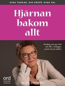 Hjärnan bakom allt (ljudbok) av Britta Sjöström