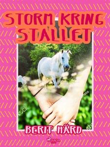 Storm kring stallet (e-bok) av Berit Härd