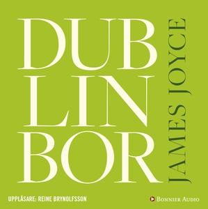Dublinbor (ljudbok) av James Joyce