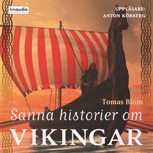Sanna historier om vikingar (ljudbok) av Tomas