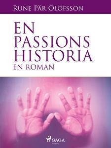 En passions historia : en roman (e-bok) av Rune