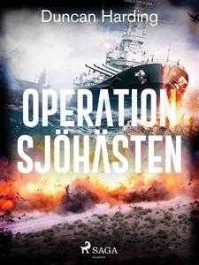 Operation sjöhästen (e-bok) av Duncan Harding