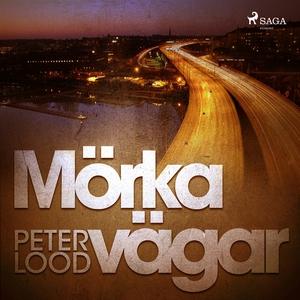 Mörka vägar (ljudbok) av Peter Lood