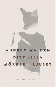 Ditt lilla mörker i ljuset (e-bok) av Andrev Wa