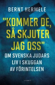 """""""Kommer de, så skjuter jag oss"""" : Om svenska ju"""