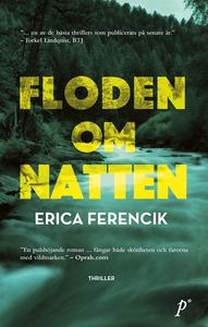 Floden om natten (e-bok) av Erica Ferencik
