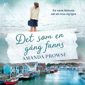 Det som en gång fanns (ljudbok) av Amanda Prows