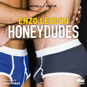 Honeydudes (ljudbok) av Enzo Lecocq