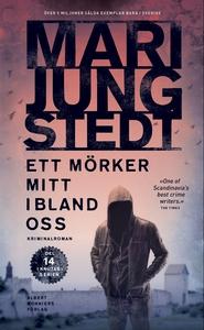 Ett mörker mitt ibland oss (e-bok) av Mari Jung
