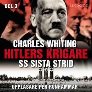 Hitlers krigare: SS sista strid - Del 3 (ljudbo