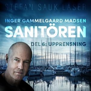 Sanitören 6: Upprensning (ljudbok) av Inger Gam