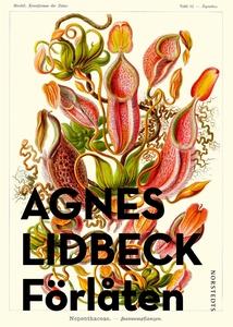Förlåten (e-bok) av Agnes Lidbeck