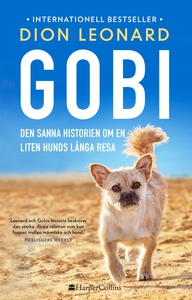 Gobi. Den sanna historien om en liten hunds lån