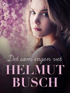 Det som ingen vet (e-bok) av Helmut Busch