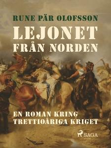 Lejonet från Norden : en roman kring Trettioåri