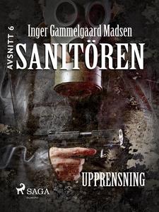 Sanitören 6: Upprensning (e-bok) av Inger Gamme