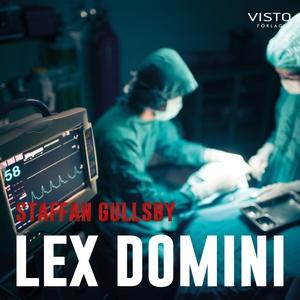 Lex Domini (ljudbok) av Staffan Gullsby