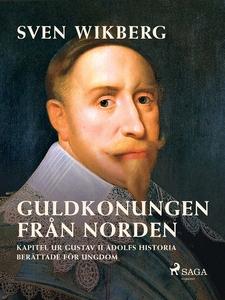 Guldkonungen från Norden : kapitel ur Gustav II