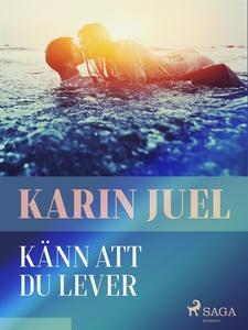 Känn att du lever (e-bok) av Karin Juel