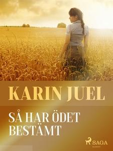 Så har ödet bestämt (e-bok) av Karin Juel