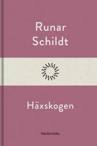 Häxskogen (e-bok) av Runar Schildt