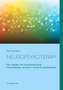 Neuropsykoterapi: Sex essäer om neuropsykologi,