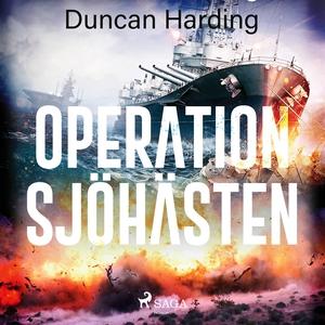 Operation sjöhästen (ljudbok) av Duncan Harding