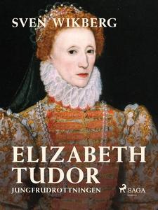 Elizabeth Tudor, jungfrudrottningen. (e-bok) av