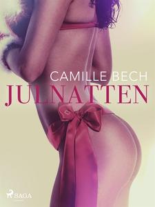 Julnatten (e-bok) av Camille Bech