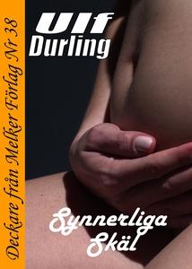 Synnerliga skäl (e-bok) av Ulf Durling