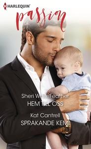 Hem till oss/Sprakande kemi (e-bok) av Sheri Wh