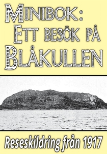 Minibok: Skildring av Blåkullen år 1917 (e-bok)