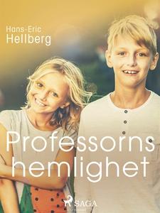 Professorns hemlighet (e-bok) av Hans-Eric Hell