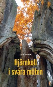 Hjärnkoll i svåra möten (e-bok) av Regina Birke
