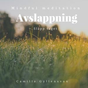 Avslappning - Släpp taget (ljudbok) av Camilla