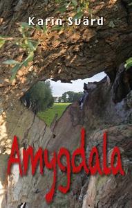 Amygdala (ljudbok) av Karin Svärd