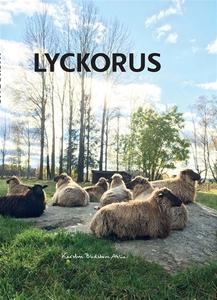 Lyckorus (ljudbok) av Kerstin Blidstam Ahlin, S