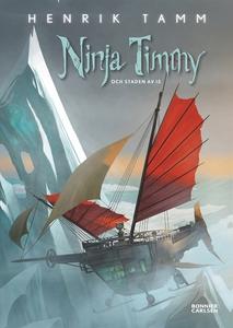 Ninja Timmy och staden av is (e-bok) av Henrik