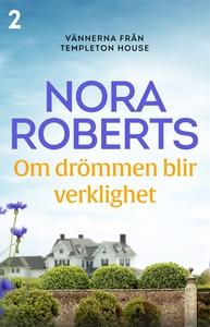 Om drömmen blir verklighet (e-bok) av Nora Robe