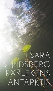 Kärlekens Antarktis (e-bok) av Sara Stridsberg