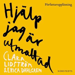 Hjälp jag är utmattad (ljudbok) av Clara Lidstr