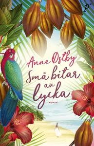 Små bitar av lycka (e-bok) av Anne Østby