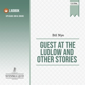 Guest at the Ludlow and Other Stories