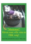 Räven som ville vara en FBK-varg: Suck! Den som ändå fick vara en riktig varg