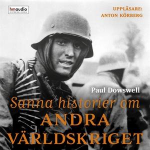 Sanna historier om andra världskriget (ljudbok)