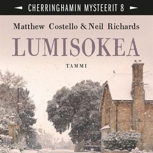 Lumisokea (ljudbok) av Neil Richards, Matthew C