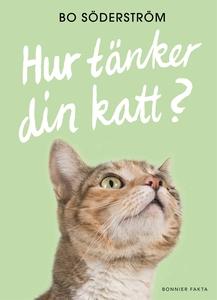 Hur tänker din katt? (e-bok) av Bo Söderström